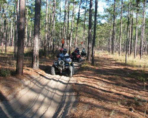 quad tours in Ocala
