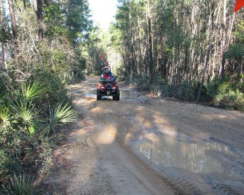 quad tours in Ocala, FL